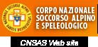 cnsas web site